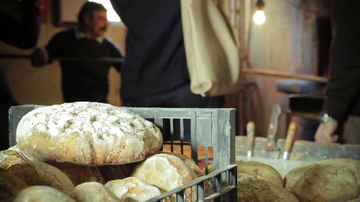 morgadio-da-calcada-in-the-wine-history7.1 Morgadio da Calçada - (N)a História do Vinho Morgadio da Calçada - (N)a História do Vinho morgadio da calcada in the wine history7