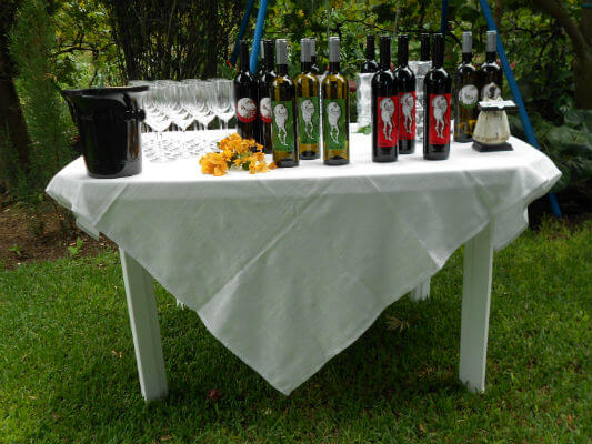 Tasting Table - Photo provided by Terras do Avô - All Rights Reserved Terras do Avô - A Charm in the North of the Island Terras do Avô - A Charm in the North of the Island Blend All About Wine Terras do Avo Tasting Table