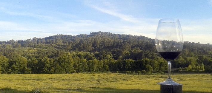 Blend_All_About_Wine_Terras_de_tavares_Landscape