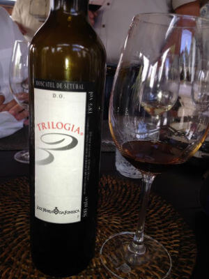 Blend_All_About_Wine_An_Afternoon_in_Camarate_Wines_Trilogia