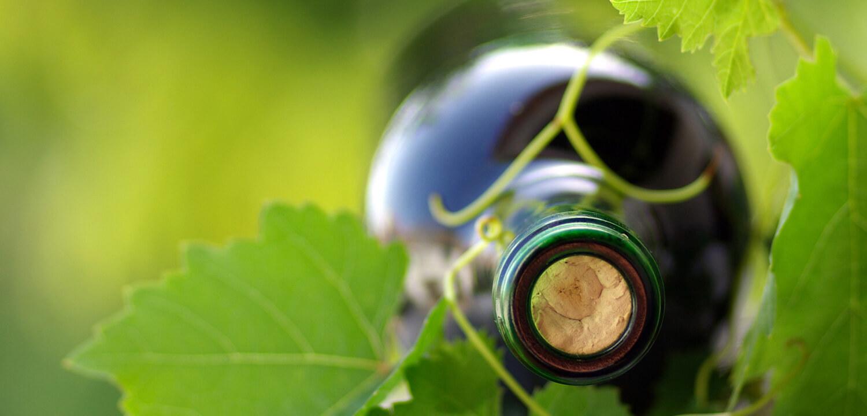 slide_rubrics_wine