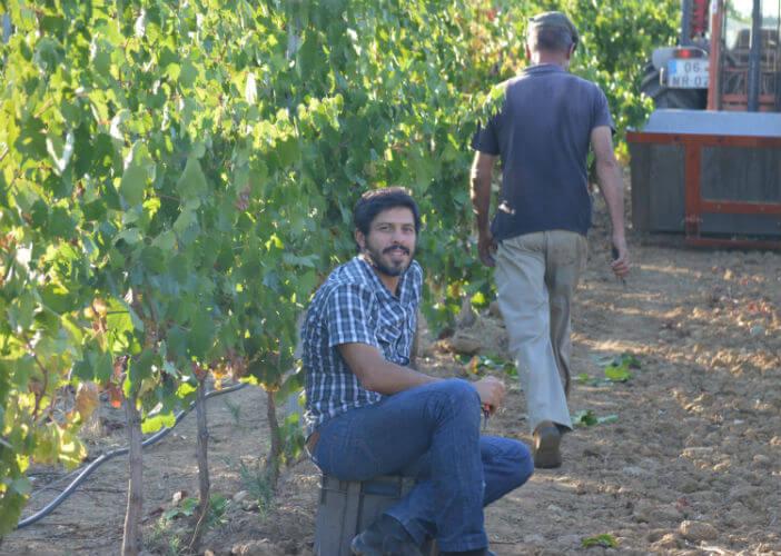 """Blend_All_About_Wine_Casca_Wines_Hélder_Cunha_3 O X marca o local para Hélder Cunha, o produtor-itinerante-salteador-de-uvas dos """"Casca Wines"""" O X marca o local para Hélder Cunha, o produtor-itinerante-salteador-de-uvas dos """"Casca Wines"""" Blend All About Wine Casca Wines H  lder Cunha 3"""