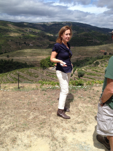 Blend_All_About_Wine_Quinta_do_Fojo_Margarida_Serodio_Borges