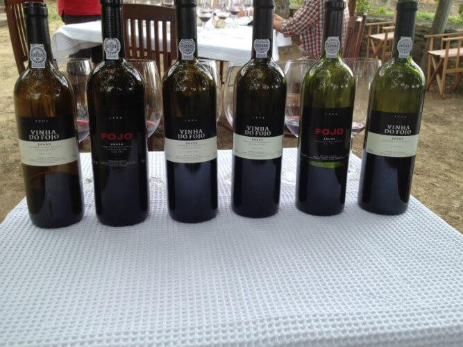 Blend_All_About_Wine_Quinta_do_Fojo_Vinhos