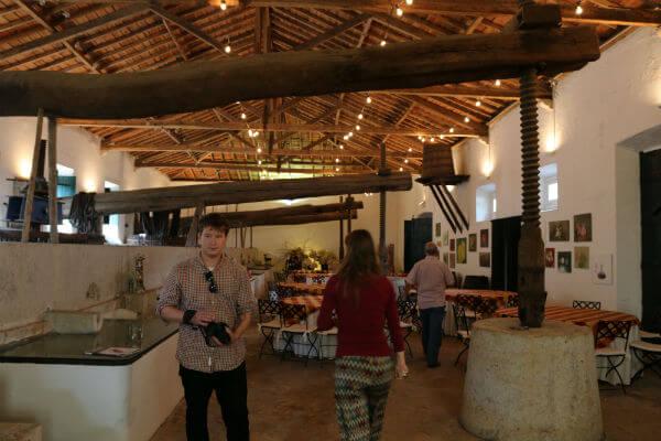 Quinta do Sanguinhal – uma verdadeira viagem ao passado! Quinta do Sanguinhal – uma verdadeira viagem ao passado! Blend All About wine Quinta Do Sanguinhal 3
