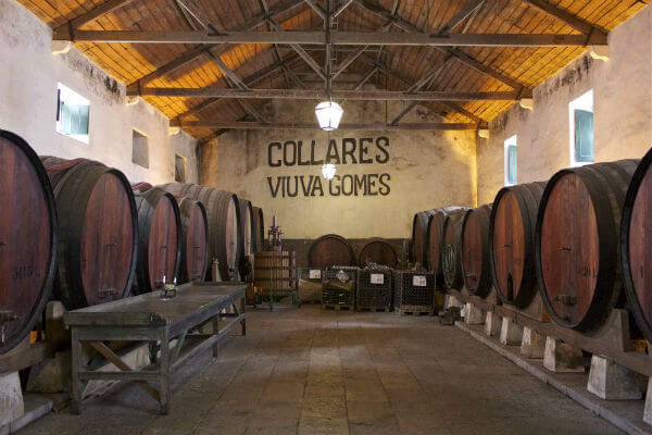 Blend_All_About_Wine_Colares_6