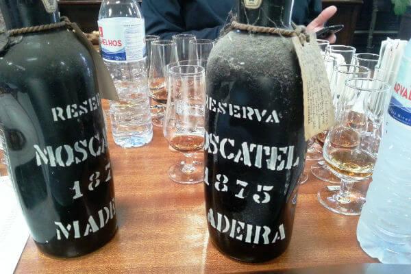 Photo Credit Sarah Ahmed Pereira d'Oliveira deformed Moscatel bottles