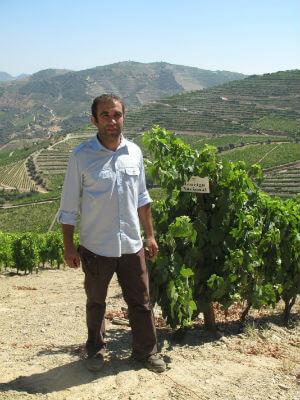 Blend_AAB_Chryseia_portugal-trip-tastings-july-032-534x712