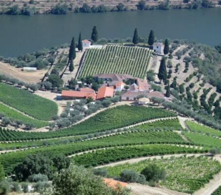 Blend_AAW_Chryseia_portugal-trip-tastings-july-0302-534x470