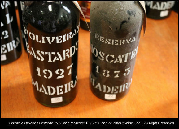 Madeira_Tour_Wines_Text madeira Madeira Madeira Tour Wines Text