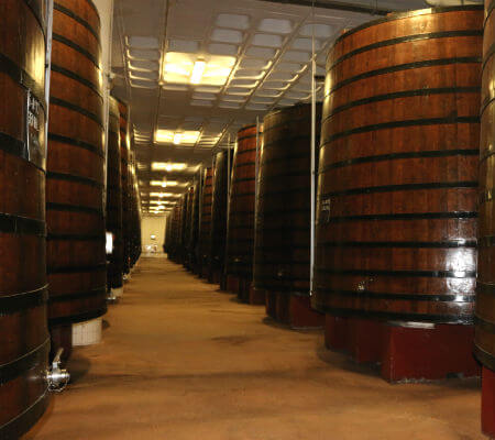 Blend-All-About-Wine-Biggest-Park-of-Mashing-Tubs-in-the-Region-2 porto cruz Porto Cruz, uma empresa em constante expansão... Blend All About Wine Biggest Park of Mashing Tubs in the Region 2