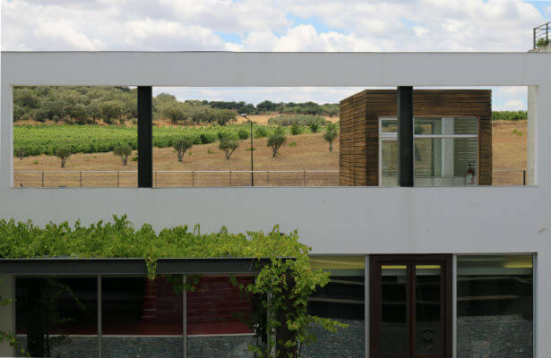 Blend-All-About-Wine-Herdade do Rocim-Inside