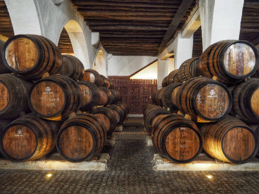Blend-All-About-Wine-Midsummer-in-Portugal-Ramo-Pinto-Wine-Cellar