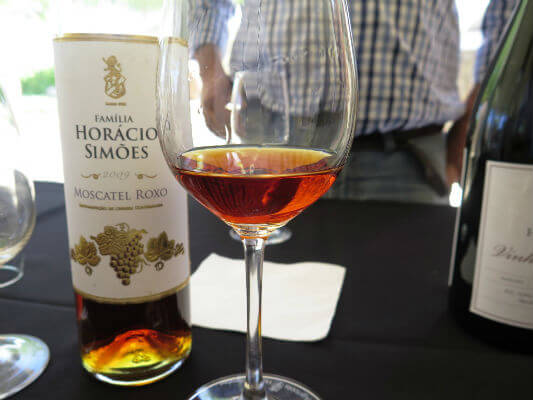 Blend-All-About-Wine-Moscatel-De-Setubal-Gold-Horacio-Simoes moscatel de setúbal Drink Like a King: Moscatel de Setúbal, Península de Setúbal's Liquid Gold Blend All About Wine Moscatel De Setubal Gold Horacio Simoes