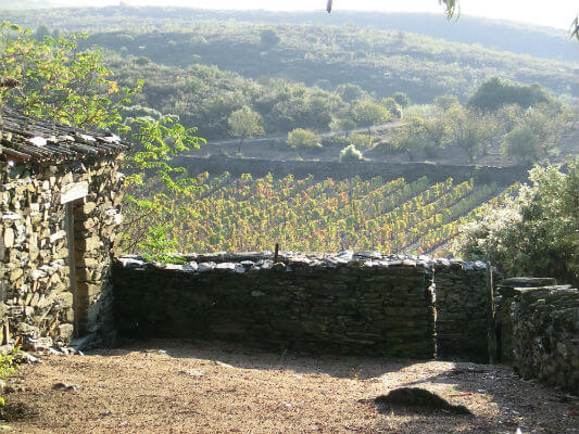 Blend-All-About-Wine-Quinta da Touriga-Chã-Schist quinta da touriga-chã Quinta da Touriga-Chã, a plenitude do Douro Superior... Blend All About Wine Quinta de Touriga Schist
