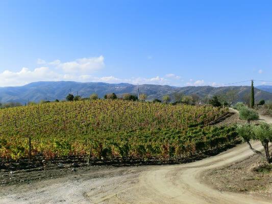 Blend-All-About-Wine-Quinta da Touriga-Chã-The-Quinta quinta da touriga-chã Quinta da Touriga-Chã, a plenitude do Douro Superior... Blend All About Wine Quinta de Touriga The Quinta