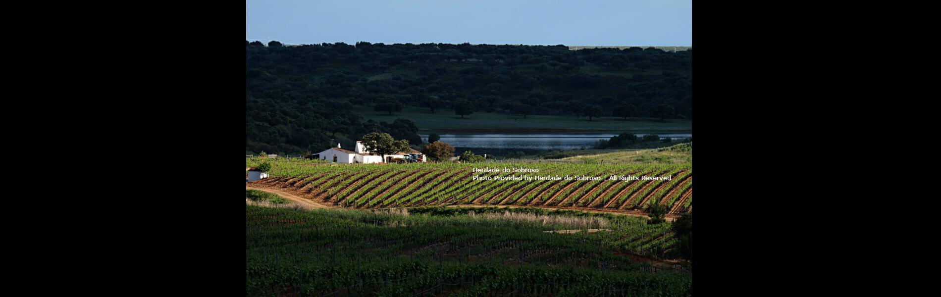 blend-all-about-wine-herdade-sobroso-herdade-slider