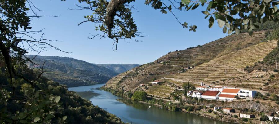 Blend-All-About-Wine-Quinta de la Rosa-Main