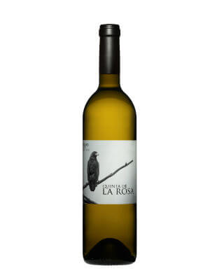 Blend-All-About-Wine-Quinta-de-la-Rosa-white quinta de la rosa Quinta de La Rosa – vinhos concentrados e elegantes Blend All About Wine Quinta de la Rosa white
