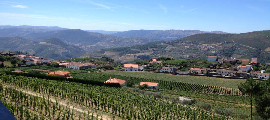 Blend-All-About-Wine-Quinta do Cume-Provesende