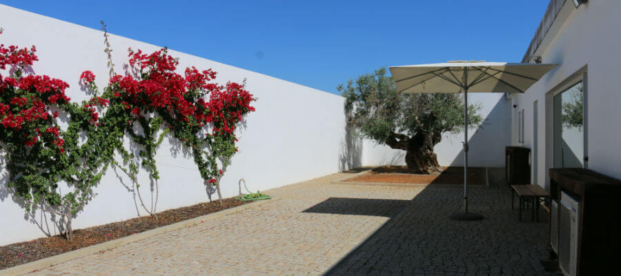 Blend-All-About-Wine-Tiago Cabaço-Cellar-3