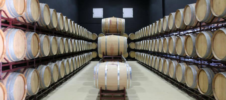 Blend-All-About-Wine-Tiago Cabaço-Cellar