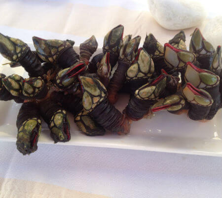Blend-All-About-Wine-Areia Restaurant Bar-Percebes