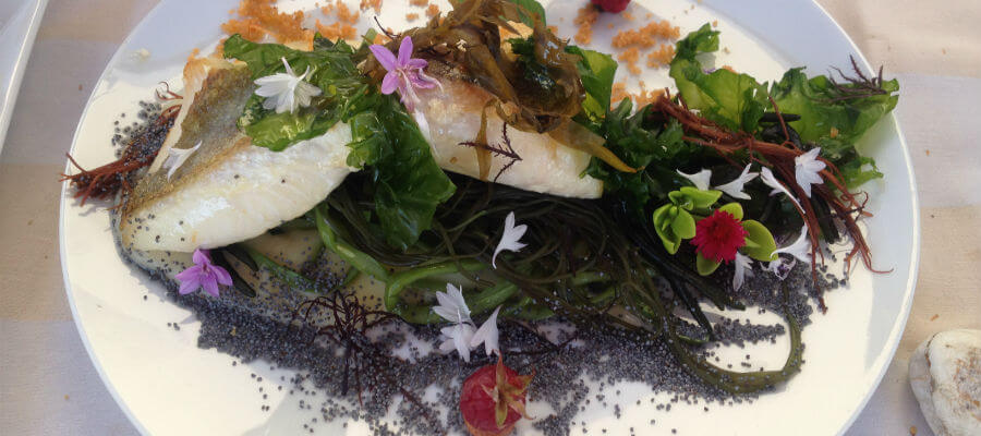 Blend-All-About-Wine-A Delicious Meal-ohn dory fillet