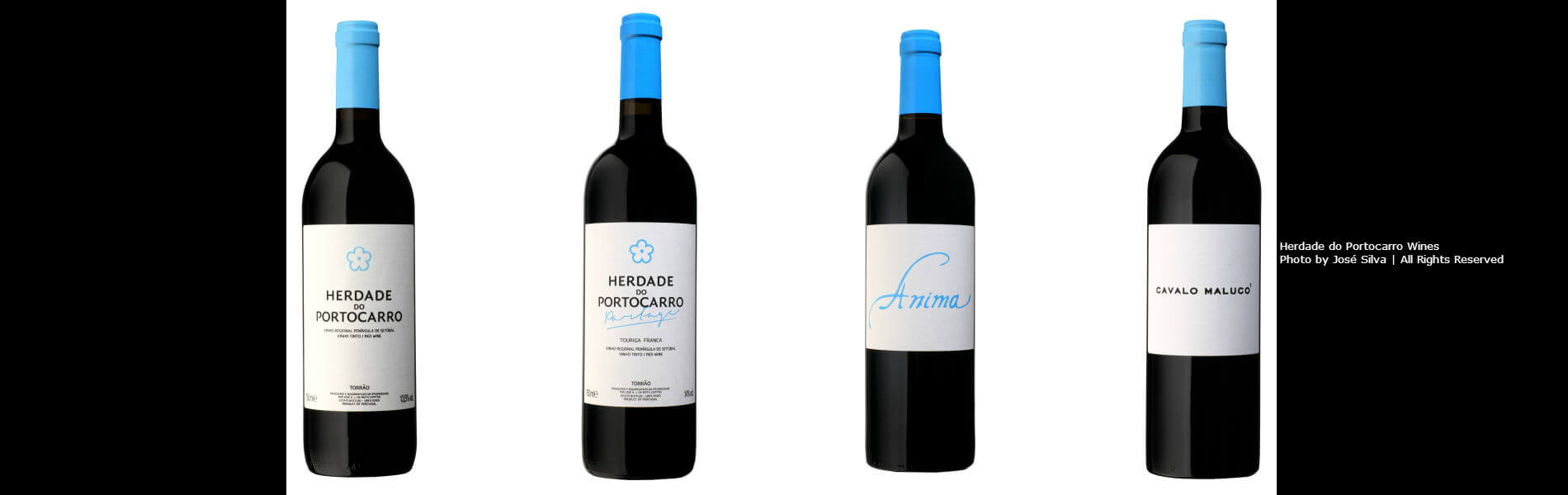 Blend-All-About-Wine-Herdade do Portocarro-Slider