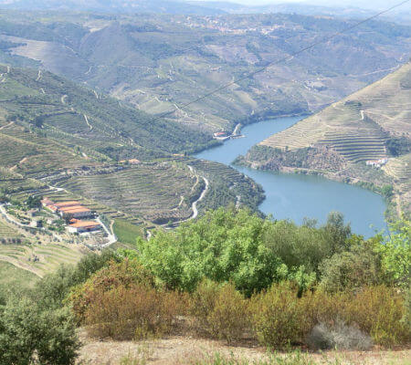 Blend-All-About-Wine-Grape-harvesting-Douro-3 vindimas Um fim-de-semana de vindimas no Douro... Blend All About Wine Quinta de Cidr   Douro 3