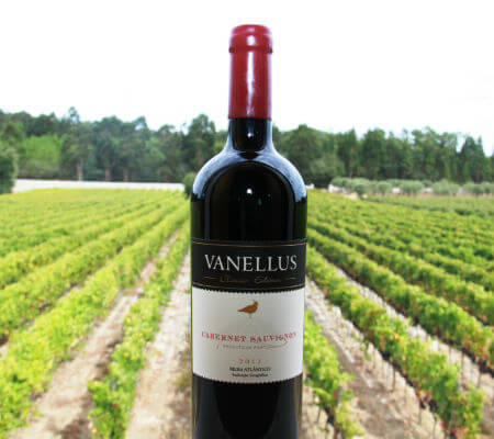 Blend-All-About-Wine-Quinta dos Abibes-Vanellus