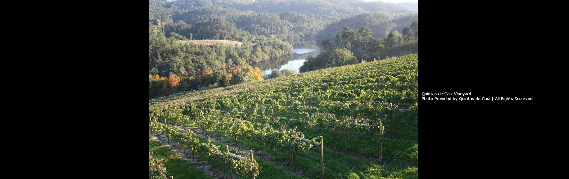 Blend-All-About-Wine-Quintas-de-Caiz-Slider