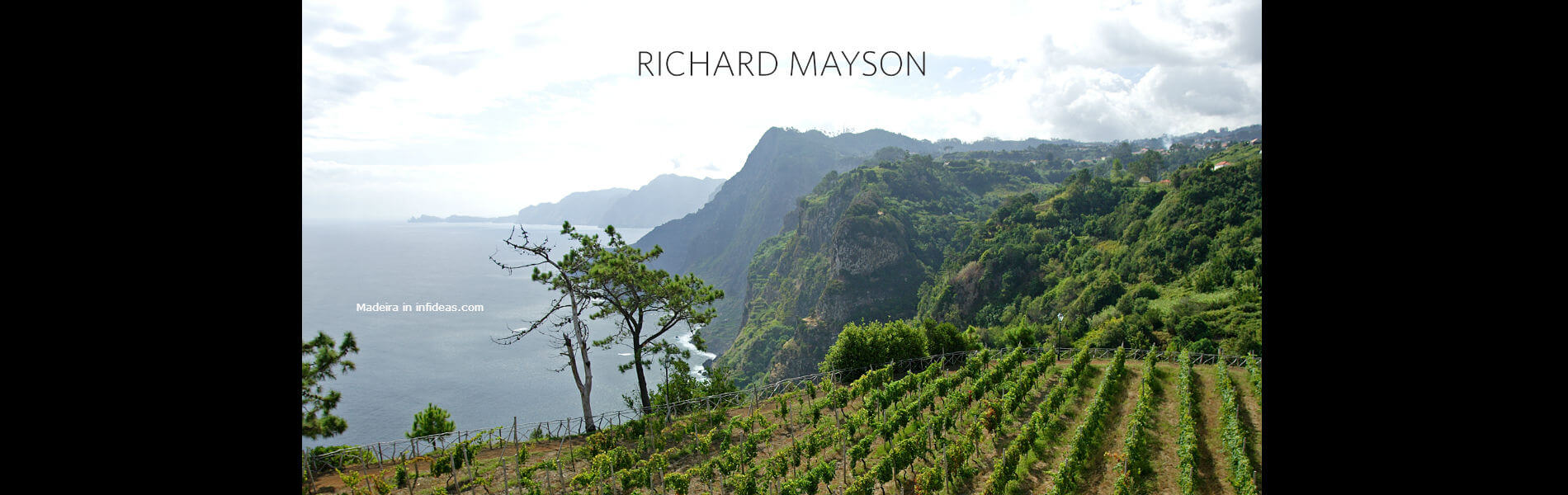 Blend-All-About-Wine-Richard-Mayson-Madeira-Wines-Slider