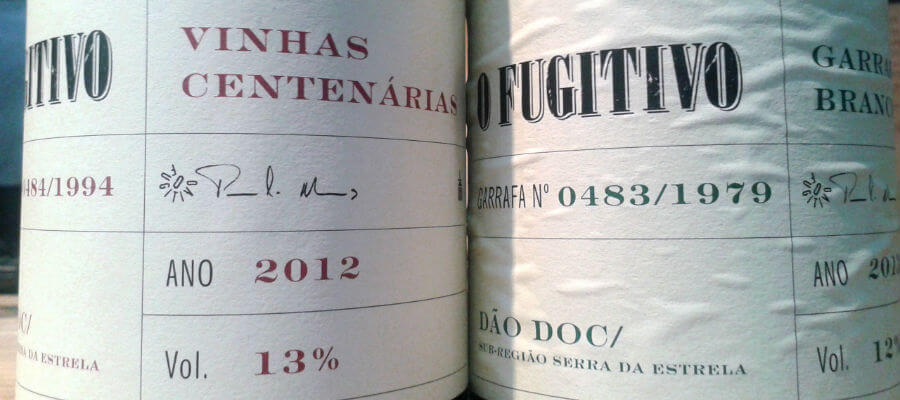Blend-All-About-Wine-Casa da Passarella-Harvesting-day-Fugitivo