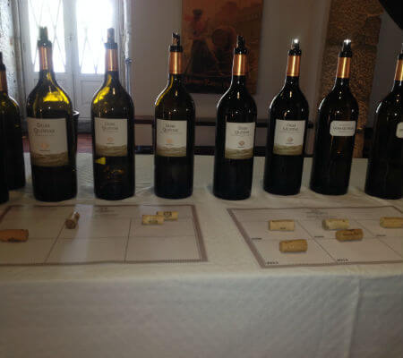 Blend-All-About-Wine-The-25-years-of the Duas Quintas wine-wines-2