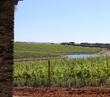 Blend-All-About-Wine-Herdade das Servas-2013 wines-Herdade-2