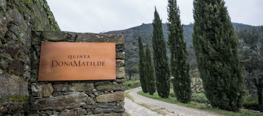 Blend-All-About-Wine-Quinta Dona Matilde-presentation-Quinta-2 quinta dona matilde The presentation of an old producer - Quinta Dona Matilde Blend All About Wine Quinta Dona Matilde presentation Quinta 2