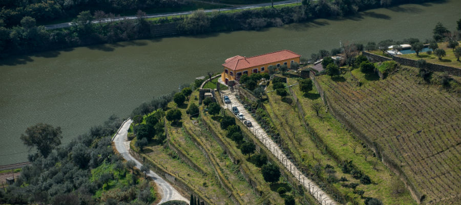 Blend-All-About-Wine-Quinta Dona Matilde-presentation-Quinta-3 quinta dona matilde The presentation of an old producer - Quinta Dona Matilde Blend All About Wine Quinta Dona Matilde presentation Quinta 3
