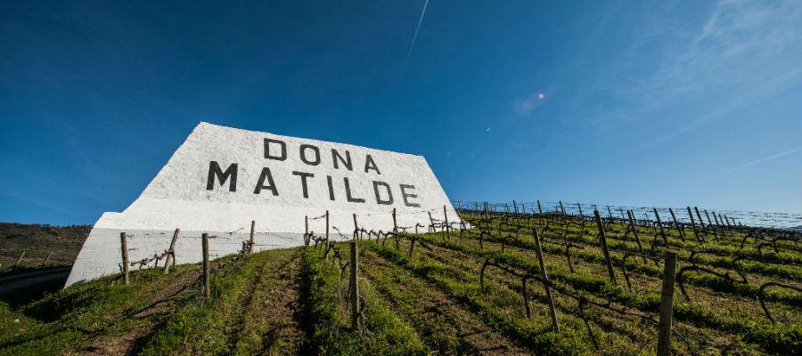 Blend-All-About-Wine-Quinta Dona Matilde-presentation-Quinta