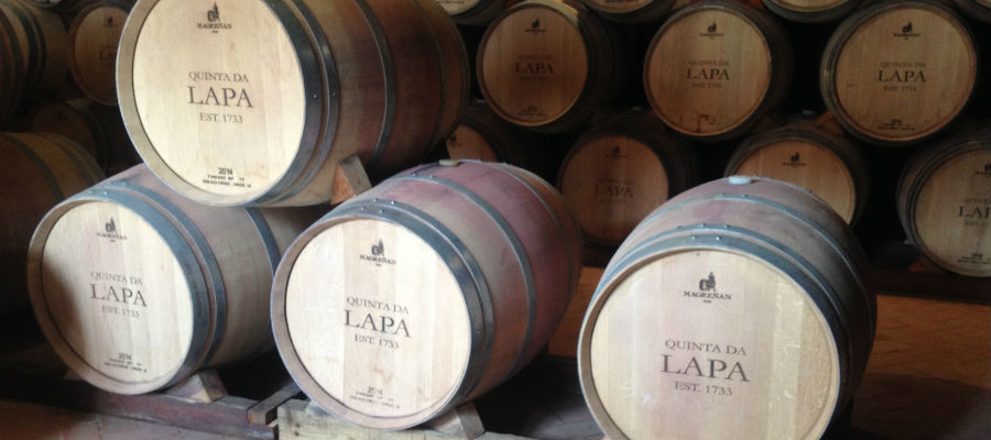 Blend-All-About-Wine-Quinta da Lapa-Barrels Room quinta da lapa Quinta da Lapa - In the land of Pina Manique with good wines Blend All About Wine Quinta da Lapa Barrels Room