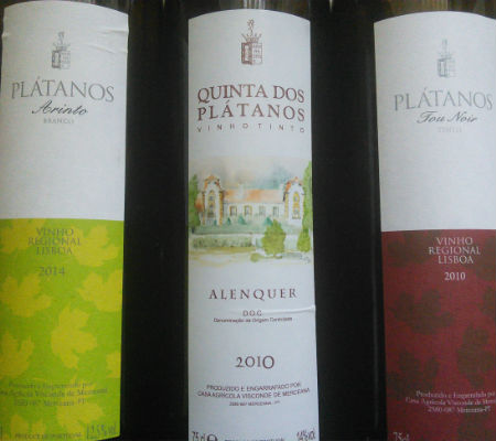 Blend-All-About-Wine-Quinta dos Plátanos-on route of the Classics-the wines