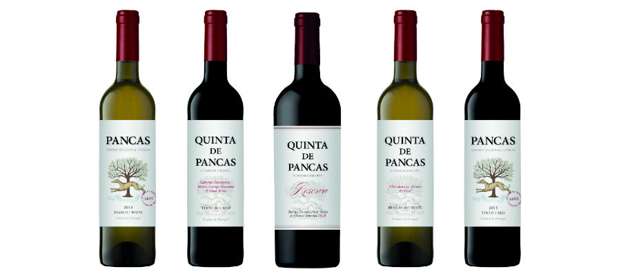 Blend-All-About-Wine-Quinta de Pancas-The new Wines quinta de pancas Quinta de Pancas, o renascimento de um clássico Blend All About Wine Quinta de Pancas The new Wines