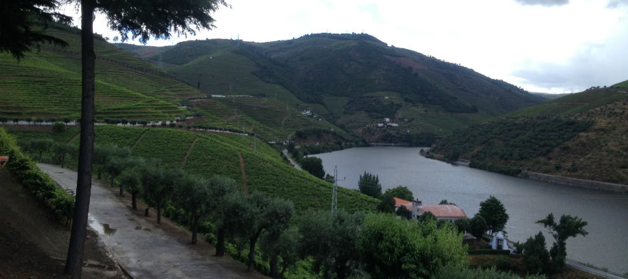 Blend_all_about_wine_paisagem_quinta_dos_frades quinta dos frades QUINTA DOS FRADES, UM DOURO REQUINTADO paisagem quinta dos frades